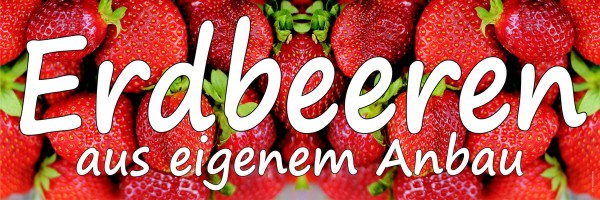 Standardbanner Motiv: Erdbeeren 300x100 cm