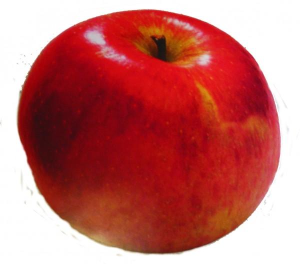 Deckenhänger Apfel